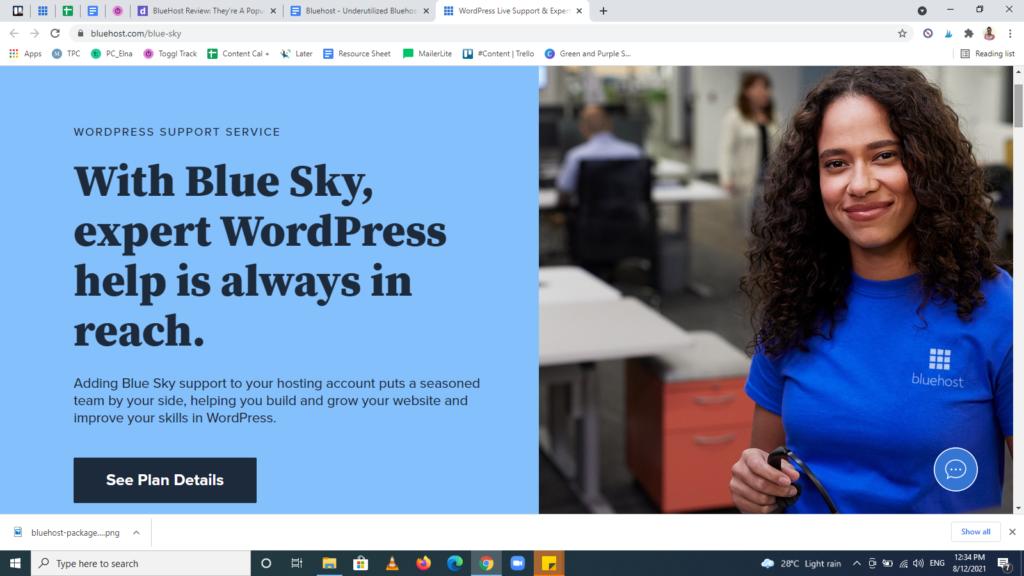Screenshot of the Bluehost feature — Blue Sky